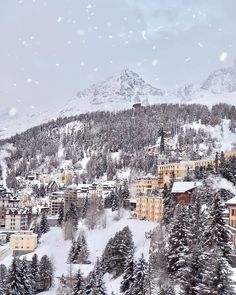 The magic snowfall St Moritz, Winter Travel, Winter Wonderland, Europe, Country, World, Places, Nature, Outdoor