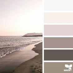 today's inspiration image for { shore tones } is by @m_vet ... thank you, Martina, for another inspiring #SeedsColor image share!