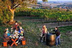 Ein Ausflug ins Weinviertel ohne Weinverkostung & zünftige Brettljausn? Nicht mit uns