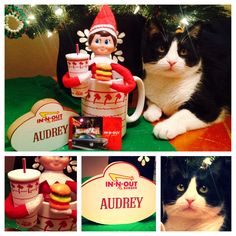Elf on the Shelf Ideas: In-N-Out craving! Antenna topper drink cup and gummy burger candy. Name badge sign available from the company store. #InNOut #Elf