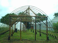 Bamboo structure for a poly tunnel... very cool.