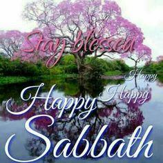 Happy Sabbath Images, Happy Sabbath Quotes, Sabbath Day Holy, Sabbath Rest, Bon Sabbat, Hebrew Greetings, Shabbat Shalom Images, Greeting Words, Weekend Images