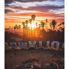 Los Angeles, California by Alec Basanec - Hollywood California Dreamin', Hollywood California, Los Angeles California, City Of Angels, Photo Wall Collage, Travel Aesthetic, Aesthetic Pictures, Aesthetic Wallpapers, Scenery