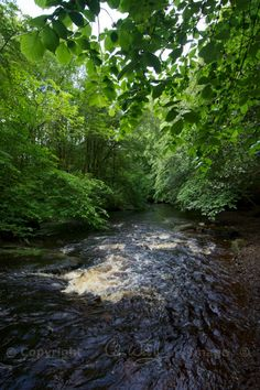 The Ardoch Burn which runs into the River Teith near Doune Castle in Perthshire, Scotland