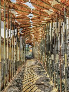 Image 6 of 17 from gallery of The Bamboo Hat Porch in Village / Rural Culture D-R-C. Photograph by Gang Xiang Bamboo Panels, Bamboo Art, Tulum, Casas Country, Bamboo House Design, Bamboo Building, Bamboo Structure, Surf House, Bamboo Architecture