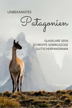 Entdeckt mit mir das unberührte Patagonien am südlichen Zipfel Südamerikas.