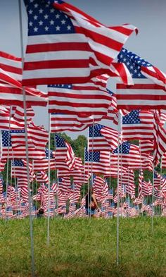 My Country tis of Thee! I Love America, God Bless America, A Lovely Journey, American Flag Wallpaper, American Spirit, American Pride, Patriotic Pictures, Independance Day, Star Spangled Banner