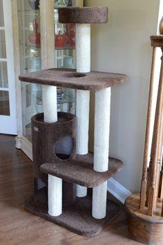 Armarkat Carpeted 56 in. Modern Cat Furniture, Condo Furniture, Diy Cat Tree, Cat Trees, Cat Activity Centre, Cat Tree Designs, Cat Tree House, Scratching Post, Pet Mat
