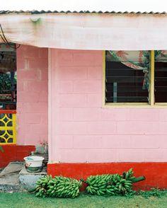 Banana's Ripening  by Andrew Jacona on Artfully Walls