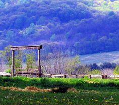 Corral Gate On New Jersey Horse Farm|Love's Photo Album