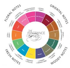 Your Guide to Perfume and Scents – Essential Oils Your guide to the fragrance categories as they relate to essential oils: biosourcenaturals… essential oils and fragrance Essential Oil Scents, Essential Oil Perfume, Essential Oil Uses, Jasmine Essential Oil, Parfum Patchouli, Fragrance Parfum, Perfume Scents, Perfume Oils, Citrus Perfume