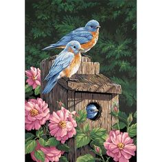 Paint By Number Kits For Adults have been around for over 50 years. Many people gently mock the idea of paint by number paintings, but needless to say 50 years later they are still going strong and hold a steady place in the market for children and. Bird House Kits, Paint By Number Kits, Bird Pictures, Wildlife Art, Bird Prints, Bird Art, Bird Feathers, Beautiful Birds, Beautiful Scenery