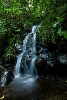 Izu Falls - Japan
