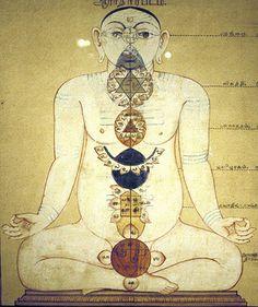 Medicina traditionala indiana