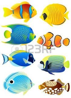 Het Verzamelen Van Kleurrijke Tropische Vissen. Royalty Vrije Cliparts, Vectoren, En Stock Illustratie. Pic 10264631.