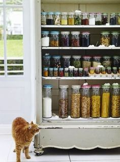 Choose your storage: http://www.stylemepretty.com/living/2014/08/01/15-ways-to-organize-your-pantry/: