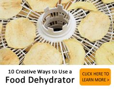 10 creative ways to use a food dehydrator