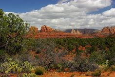 Northern Arizona presents some lovely scenery...from the Red Rocks of Sedona to the longest section of preserved historic Route 66 - the Mother Road - in the country.
