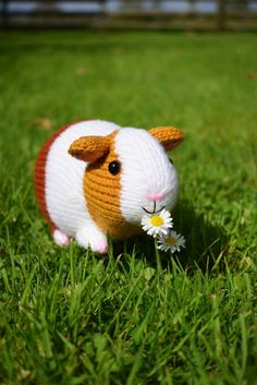 Gordon the Guinea Pig Knitting pattern by Trish Roberts – Monkey Stuffed Animal Christmas Knitting Patterns, Crochet Patterns, Sewing Toys, Sewing Crafts, Sewing Stuffed Animals, Stuffed Toys, Paintbox Yarn, Arm Knitting, Animal Nursery