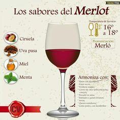 Merlot - Wine Infographic #cCreams #cRed