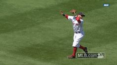 Dustin Pedroia became the latest victim in baseball's never - ending war against the sun