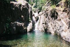 balch park california - Yahoo Search Results