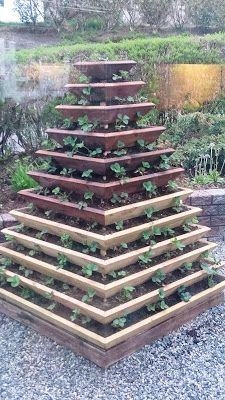 KREATIVE HENDER : Jordbærpyramide Flowers Garden, Stepping Stones, Gardens, Texture, Wood, Outdoor Decor, Pictures, Crafts, Instagram