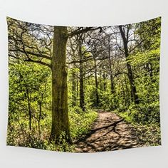 Society6 - The Forest Path Wall Tapestry by David Pyatt