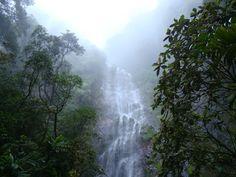 La Tigra National Park, Tegucigalpa, Honduras (Summer I want to go here. Tegucigalpa, Honduras Travel, Honduras Food, Future Travel, Central America, World Heritage Sites, Day Trip, State Parks, Tourism