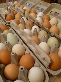 Buy your eggs in paper cartons and then reuse those cartons in innovative ways.