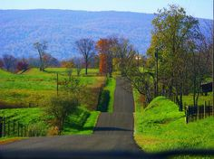 Shenandoah Valley, Southern Virginia. The most beautiful drive I've ever taken. It really did look just like this in April.