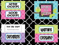 Freebie Owl Classroom Clip Chart- 3rd Grade's a Hoot