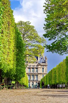 Tuileries Garden ~ public garden located between the Louvre Museum and the Place de la Concorde, Paris, France
