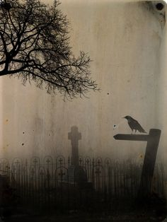 Image discovered by DeerSuicide. Find images and videos about dark, raven and crow on We Heart It - the app to get lost in what you love. Images Gif, Les Religions, Crows Ravens, Gothic Art, Memento Mori, Samhain, Nocturne, Hallows Eve, Oeuvre D'art