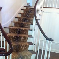 Antelope Stair Runner ~ not usually a fan of animal print carpet...but I love this