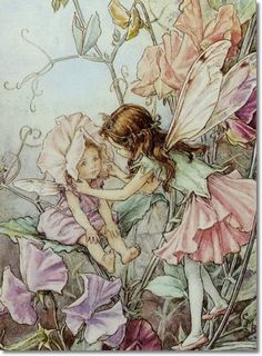 Cicely Mary Barker - Flower Fairies of the Garden - The Sweet Pea Fairies Archival Fine Art Paper Print