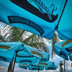 #bobbiandleesphotoadventures #welltravelled in #plymouth #umbrellas . . . . . . . . . . . #chasinglight #toldwithexposure #acolorstory #colorhunters #colorlove #justgoshoot #iphonography