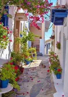 Alley in Skopelos > #Greece #Grekland