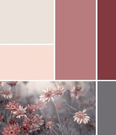 Dusky wall paint and decoration in the bedroom - these colors go well with it Dusky pink bedroom: ideas for color combinations as wall paint Original beanbag - ice blue FatboyFatboyRetro side table Scandinavia gray oak beds. Pink Color Schemes, Colour Pallette, Color Combinations, Old Rose Color Palette, Gray Bedroom Color Schemes, Maroon Color Palette, Maroon Colour, Gray Color, Pink Palette