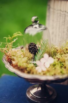 Moss on a cake tier. I would do this with a few pillar candles instead of a cloche and pinecone