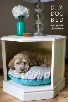 Dog Bed in night Stand