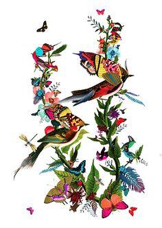 Parrot and Butterfly Art Print | Graeni Grein Art Print by Kristjana S Williams