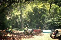 Audiorama del bosque de chapultepec, Mexico