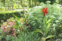 Beauregard's simply amazing garden. Summer 2013