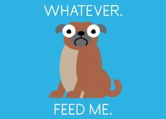 The Pugly Truth by David Olenick | Threadless