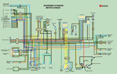 Floor Plans, Circuit Diagram, Electrical Wiring, Branding, Floor Plan Drawing, House Floor Plans