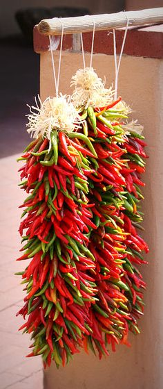 Chilli Photograph - Market Chillies by Tina Meador Fruit And Veg, Fruits And Veggies, Chile Picante, Southwest Decor, Southwestern Decorating, Southwestern Style, Serrano Pepper, Hottest Chili Pepper, Some Like It Hot