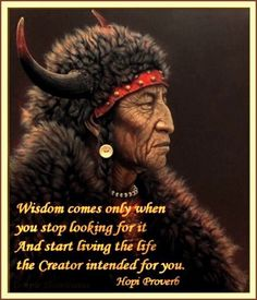 Wisdom comes only when you stop looking for it and start living the life the Creator intended for you. Hopi proverb
