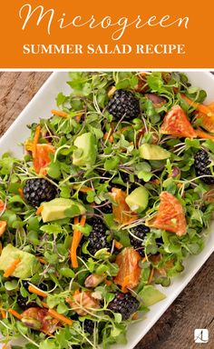 Fresh Eating with Microgreens is part of Healthy recipes easy snacks - Microgreens are all the rage—and super healthy, too! Healthy Snacks For Diabetics, Easy Healthy Recipes, Whole Food Recipes, Vegetarian Recipes, Cooking Recipes, Easy Snacks, Recipes Dinner, Summer Salad Recipes, Summer Salads
