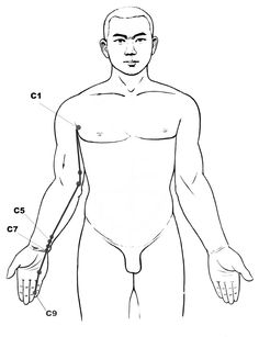 Heart #acupressure #reflexology meridian • Press any sore point on that #meridian so as to balance it back.
